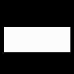 ford-branco